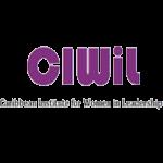 Caribbean Institute for Women in Leadership
